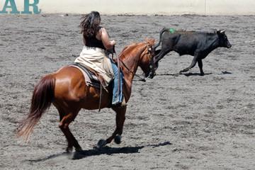 cowgirl & steer