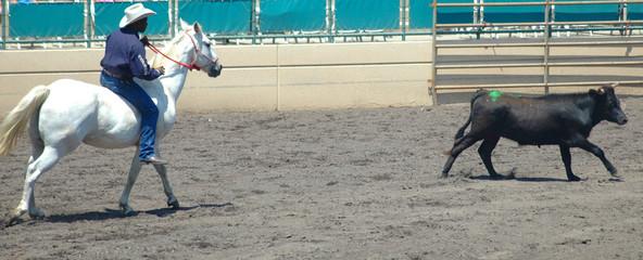 cowboy & steer