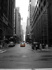 lone new york cab
