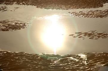 reflet du soleil dans une mare