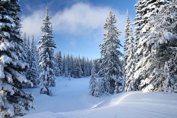 snow heaven