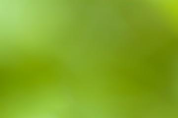 green backdrop