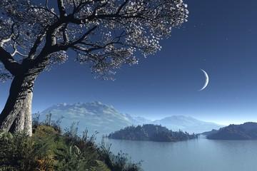 scandinavian moonlight