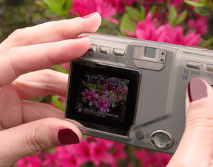 prosumer digital camera