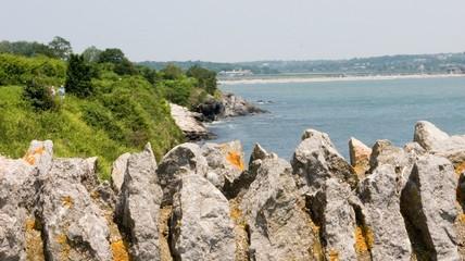 wilderness along the newport coast