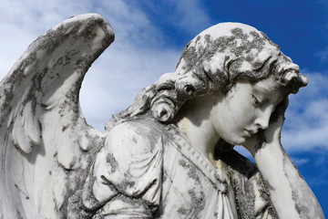 forlorn angel