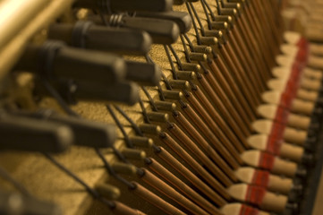 piano strings and soundboard