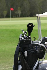 golf clubs on cart