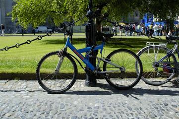 bicicle in university of dublin garden