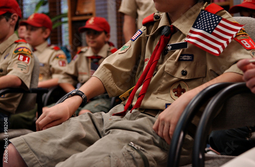 Working with adults scouts