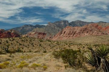 red rock desert scenes 2