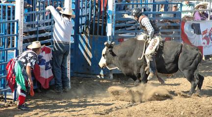 bull, rider, and cowboys