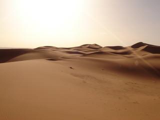 sahara desert sand dunes with reflecting sun