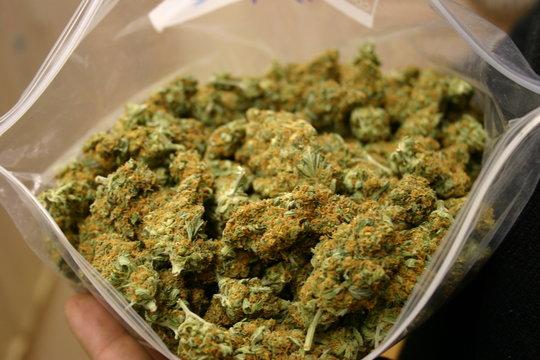 bag of buds