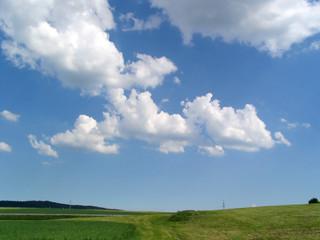 grünes feld im sommer