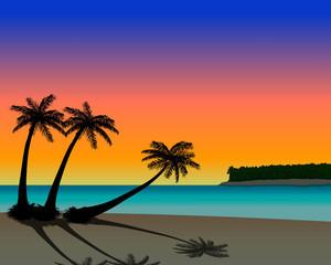 sunset palm beach