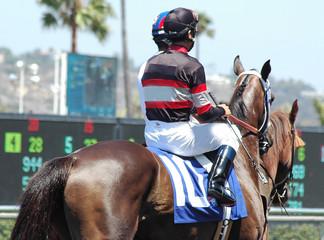 jockey & race horse