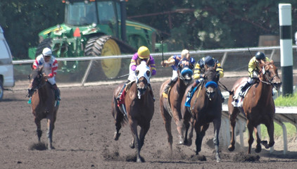 race horses turning into the stretch