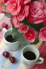 pink begonia with coffee cups at blured background