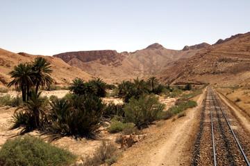 paysage pris d' un train touristique