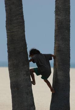 climbing the life