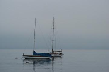 saiil boats in puget sound