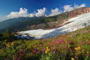 Foto auf Acrylglas Glaciers mighty glacier in summer