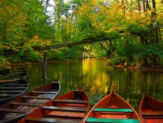 Obraz boats on the river - fototapety do salonu