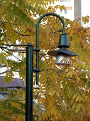 autumn, sheet, torch