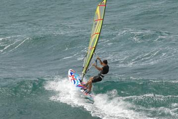 windsurfer 51