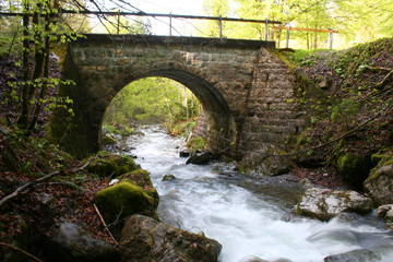 pont forestier