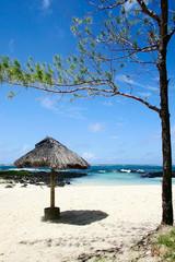 beach. mauritius.