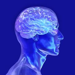 glass male head with brain
