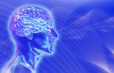 glass male head with brain on brainwaves backgroun
