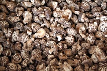 dried chinese mushrooms