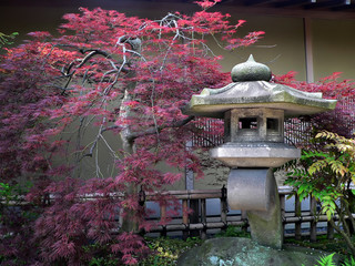 Photo sur Aluminium Japon japanese garden