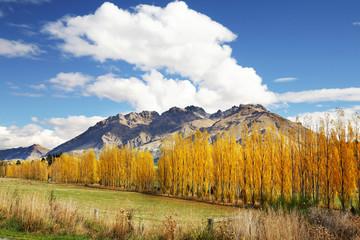 mountain view in autumn