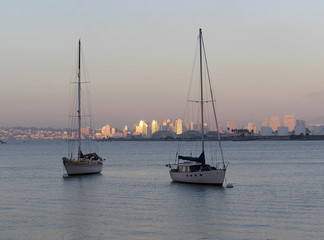 sailboats of san diego