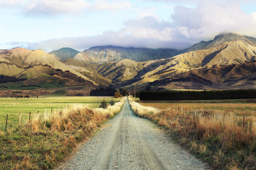road-trip to nz