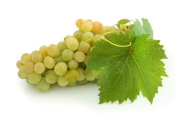 yellow grape cluster
