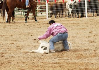 steer wrestling 2