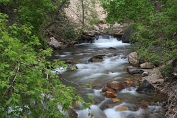 unitas mountain streambed