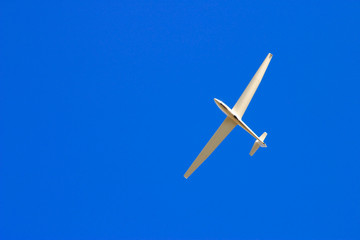 soaring through blue sky
