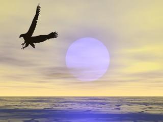 surreal eagle 6