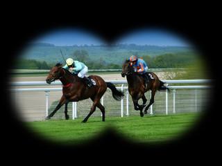 watching horse racing