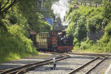 vale of rheidol railway aberystwyth devils bridge