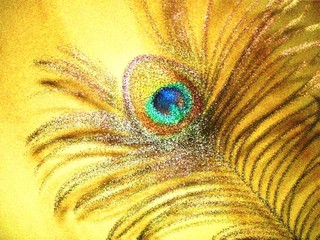 the peacock feather in an impressionistic manner