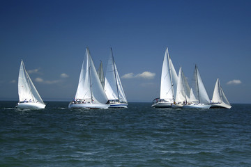 Fotorollo Motorisierter Wassersport start of a sailing regatta