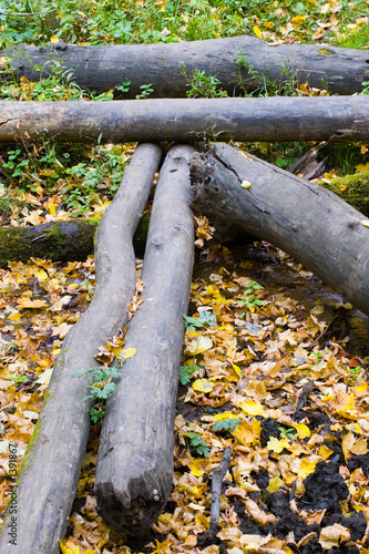 Log falled raised beds