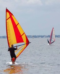 windsurfing on key biscayne